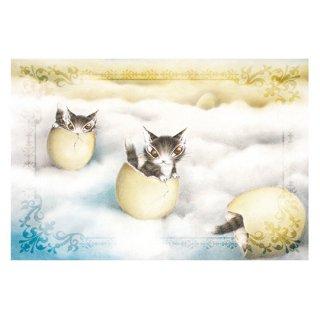 わちふぃーるど 猫のダヤン BABYダヤンポストカード 卵