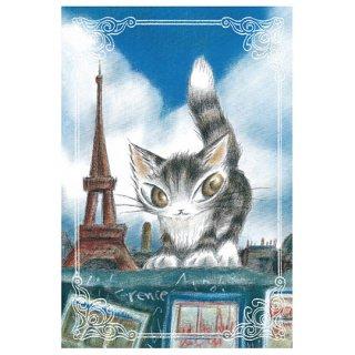わちふぃーるど 猫のダヤン BABYダヤンポストカード パリ