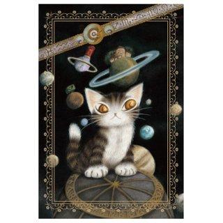 わちふぃーるど 猫のダヤン BABYダヤンポストカード 星座