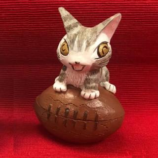 わちふぃーるど 猫のダヤン トレジャーボックス ラグビー