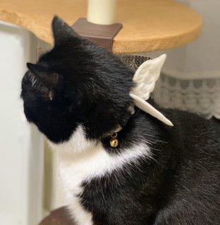猫さんの首輪 天使と悪魔 Mサイズ