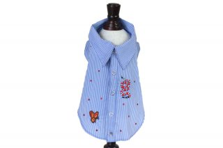 Shirt long boy【Bumble Bee】<img class='new_mark_img2' src='https://img.shop-pro.jp/img/new/icons11.gif' style='border:none;display:inline;margin:0px;padding:0px;width:auto;' />
