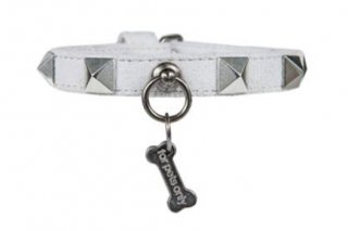 【ご予約】CHIC AND STUD COLLAR GREY 【for pets only】<img class='new_mark_img2' src='https://img.shop-pro.jp/img/new/icons11.gif' style='border:none;display:inline;margin:0px;padding:0px;width:auto;' />