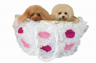 Candy bag glitter hearts【IT-DOGS】