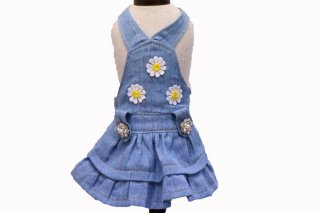 <img class='new_mark_img1' src='https://img.shop-pro.jp/img/new/icons11.gif' style='border:none;display:inline;margin:0px;padding:0px;width:auto;' />Daisy Light Denim【Ruban d'or】