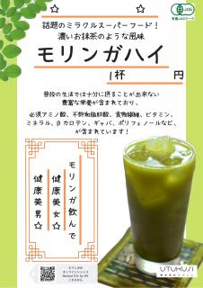 【事業者様専用】モリンガハイPOP�