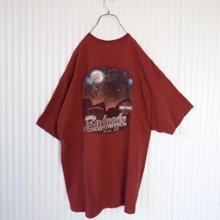 HARLEY-DAVIDSON Bad lands バックロゴ BIG Tee