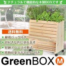 GreenBOX M(グリーンボックスM)