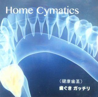 Home symatics〈健康歯茎〉歯ぐきガッチリ