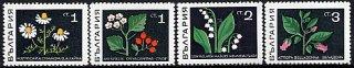 ブルガリア・花切手・1969(8)