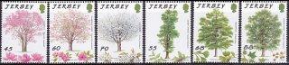 ジャージー森林保護・2012(6)