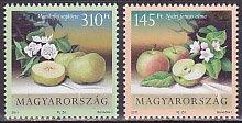 ハンガリー・果物・2011(2)