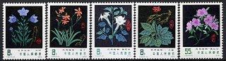 中国・薬用植物(5)