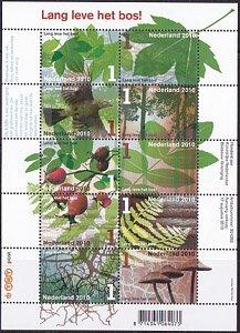 王立森林学会100年・M/S・2011