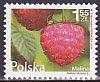 ポーランド・ベリー・切手・2011