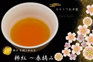 稀少 手摘み和紅茶 〜 春摘み(ファースト・フラッシュ)