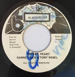 GARNET SILK & TONY REBEL - BROKEN HEART