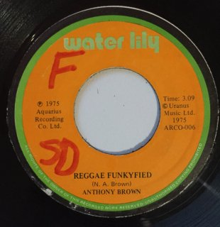 ANTHONY BROWN - REGGAE FUNKYFIED