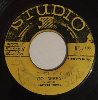 JACKIE OPEL - GO WHEY<img class='new_mark_img2' src='https://img.shop-pro.jp/img/new/icons25.gif' style='border:none;display:inline;margin:0px;padding:0px;width:auto;' />