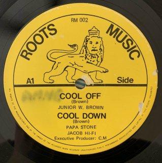 JUNIOR BROWN - COOL OFF
