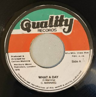 CARLTON MANNING - WHAT A DAY