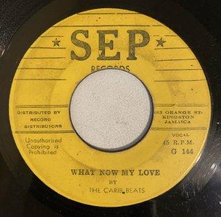 CARIB BEATS - WHAT NOW MY LOVE