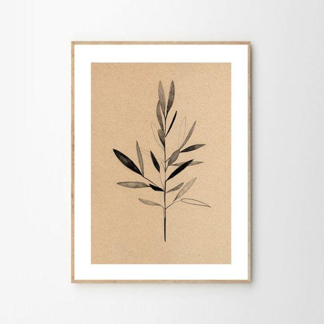 OLIVE by Ekaterina Koroleva (30×40cm)