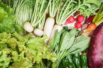 ふえのみち野菜セット