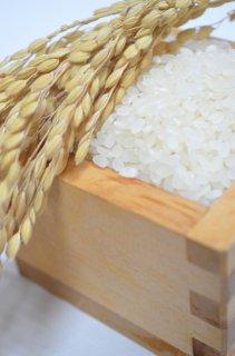 笛路村棚田米(コシヒカリ)3kg