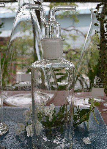 ラボラトリーボトル,ピューター,アンティークガラス,アンティークボトル,,花瓶,ジャグ,水差し,ピュレット,ブロカント,アンティーク雑貨,通販,販売3