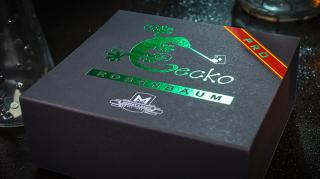 Gecko Pro System(ゲッコーPro)