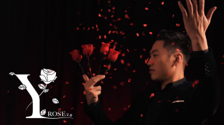 Y-Rose 2.0 by Mr. Y & Bond Lee