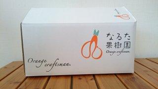 河内晩柑【ご家庭用】 5kg 3L〜4L混合 8〜9個