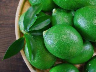 無農薬グリーンレモン【キズ小】4kg 20〜24玉
