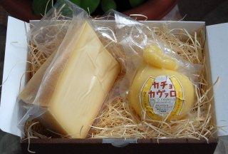 焼きチーズ ギフト