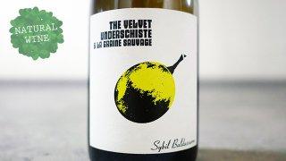 [3375] The Velvet Underschiste 2016 Domaine La Graine Sauvage / ザ・ヴェルヴェット・アンダーシスト 2016