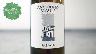 [2250] Sassaia SPECIAL EDITION 2016 La Biancara / サッサイア スペシャル・エディション 2016 ラ・ビアンカーラ