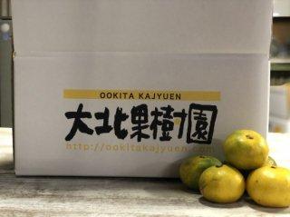 極早生温州みかん 5kg L,M,Sサイズ混合 (80~100個入り)