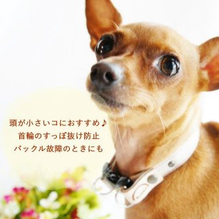 【オプション】首輪のすっぽ抜け防止に!ダブルDカン首輪へバージョンアップ!(15�用)