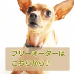 <img class='new_mark_img1' src='//img.shop-pro.jp/img/new/icons25.gif' style='border:none;display:inline;margin:0px;padding:0px;width:auto;' />【オーダー用】20�幅首輪