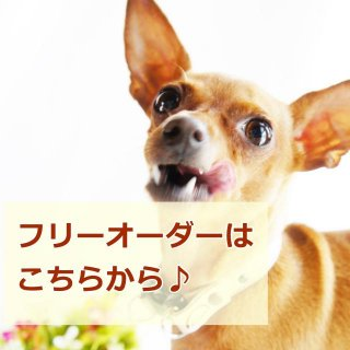 【フリーオーダーフォーム】ベーシックリード★5キロor10キロ