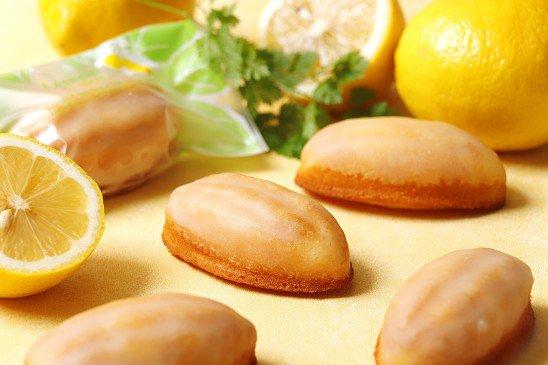 【送料無料】レモンケーキ 14個入