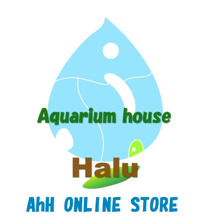 AhH ONLINE STORE