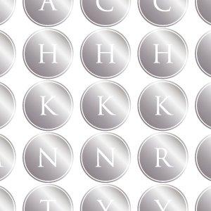 ALPHABET MARK CIRCLE (アルファベットマーク サークル・メタリックシルバー)