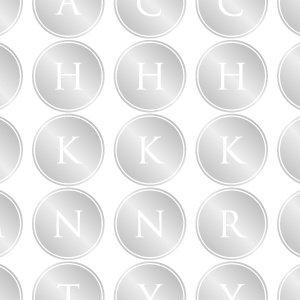 ALPHABET MARK CIRCLE (アルファベットマーク サークル・プラチナ)