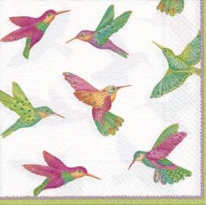 BIRDS (L)