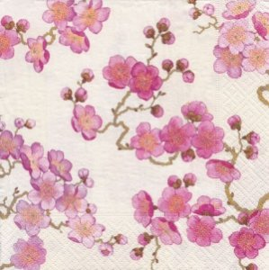 PLUM BLOSSOMS WHITE [L]
