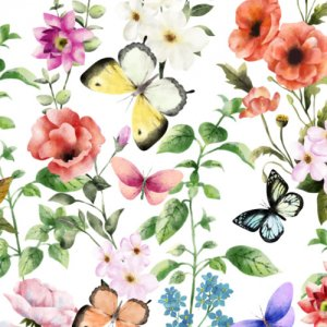 SPRING FLOWER (スプリングフラワー)