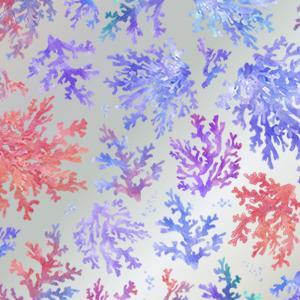WATER CORAL (ウォーターコーラル/サンゴ/珊瑚/ガラス用)