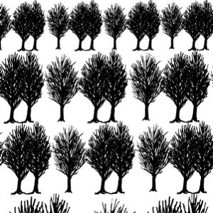 FOREST(フォレスト・ブラック)